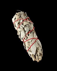 Weißer Salbei Stick 16cm